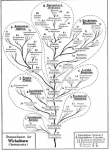 Stammbaumforschung
