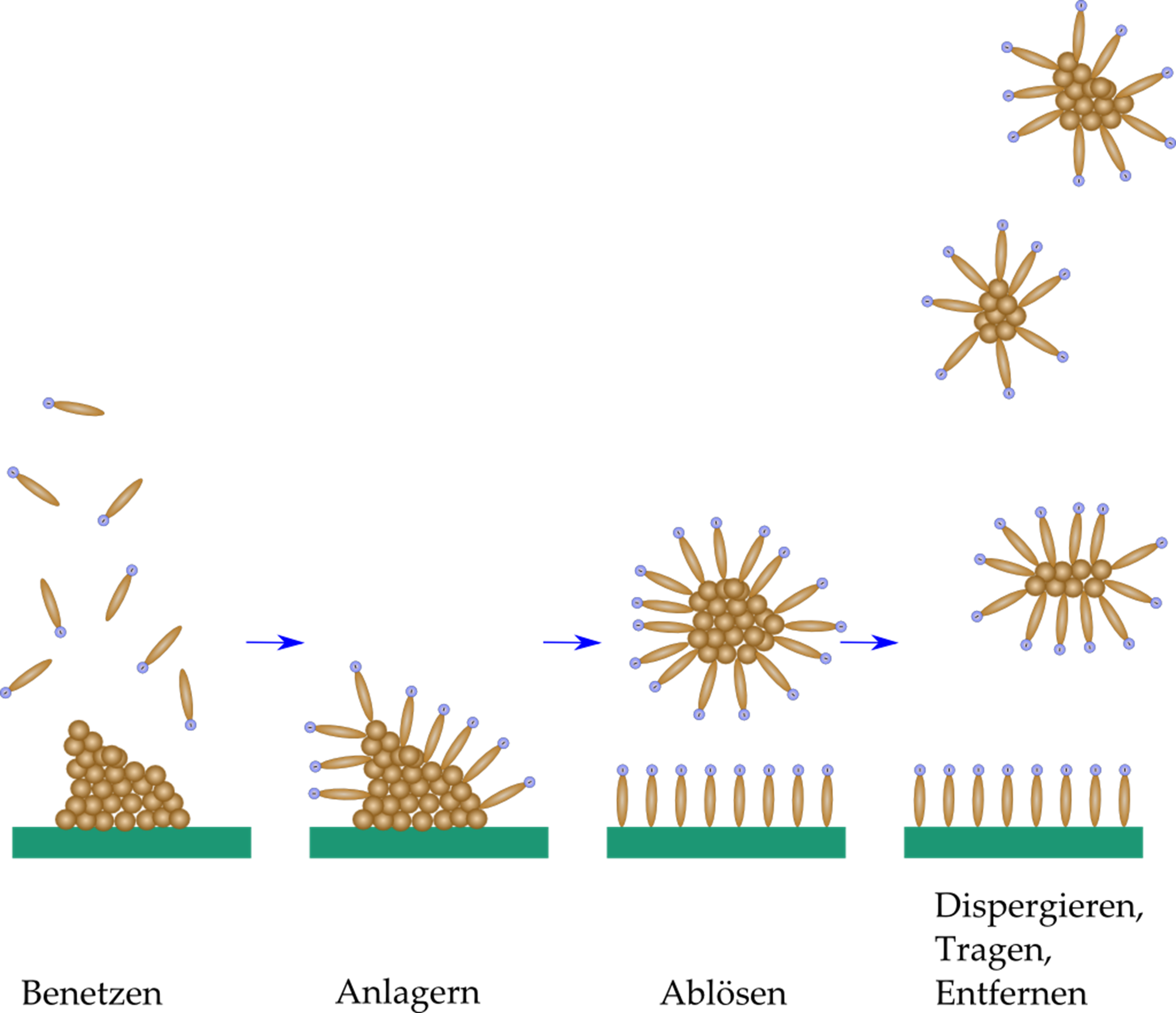 Baumstumpf Entfernen Mit Chemie : waschwirkung organische chemie abitur vorbereitung ~ Frokenaadalensverden.com Haus und Dekorationen