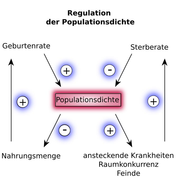 Dichteabhängige und dichteunabhängige Regulation des ...