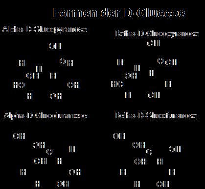 Unterteilung Der Kohlenhydrate Und Projektionen