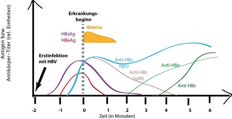 antikorper im sperma