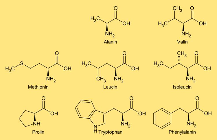 Unterteilung Der Aminosäuren Organische Chemie