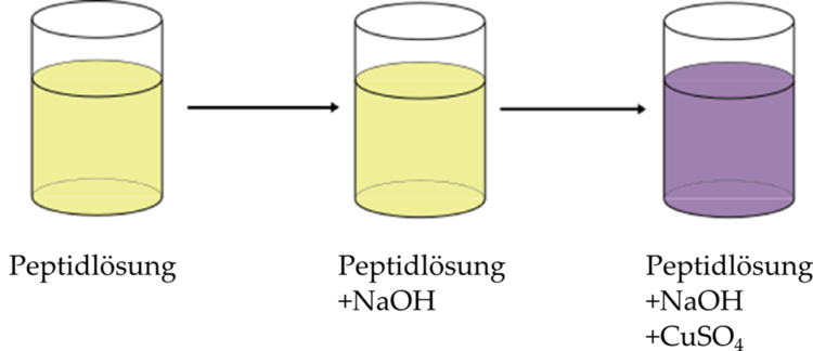 Nachweise Chemie