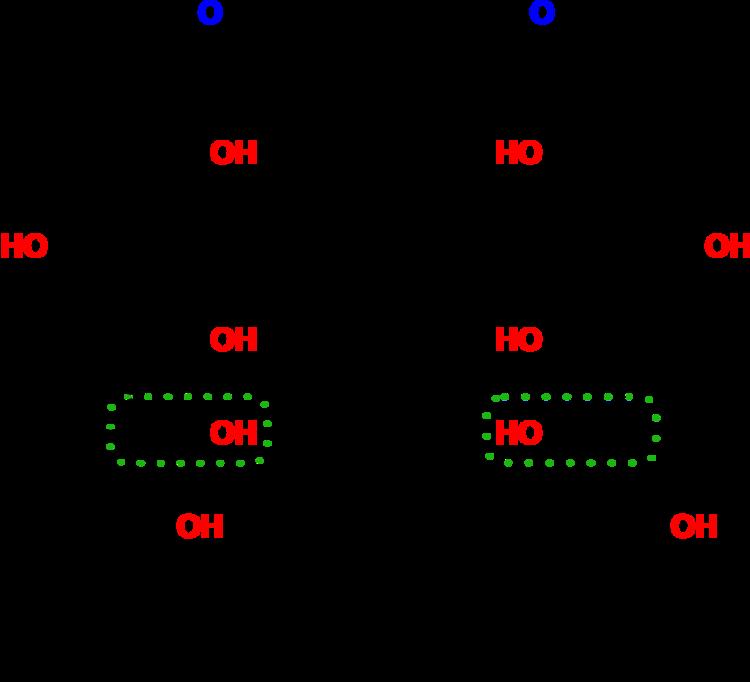Unterteilung Der Kohlenhydrate Und Ihre Projektionen