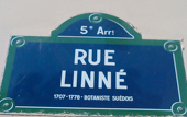 Rue Linné in Paris zu Ehren des Systematikers.